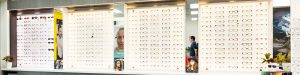 Dwyer-and-Ross-Frame-display-optometrists